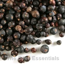 Juniper Berries - 1 oz.