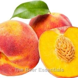 Vinters Harvest Fruit Wine Base Peach