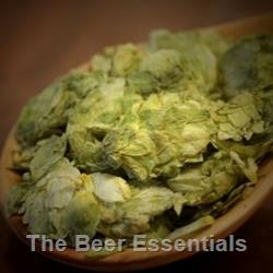 Crystal - Whole Hops